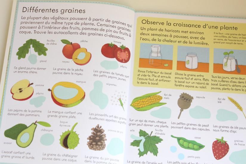 lecture-livre-lire-jardin-comment-pousser-fleurs-fruits-nature-decouverte-enfant-junior-cycle-plante-nathan-usborne (5)