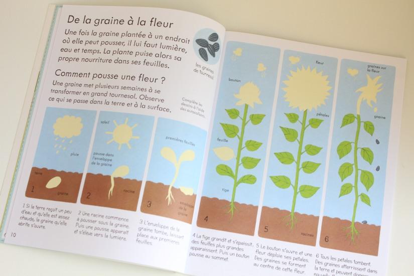 lecture-livre-lire-jardin-comment-pousser-fleurs-fruits-nature-decouverte-enfant-junior-cycle-plante-nathan-usborne (6)