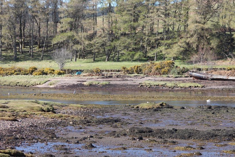 ile-mull-isle-island-ecosse-scotland-road-trip-voyage-loch-lac-decouverte-balade-phare (15)