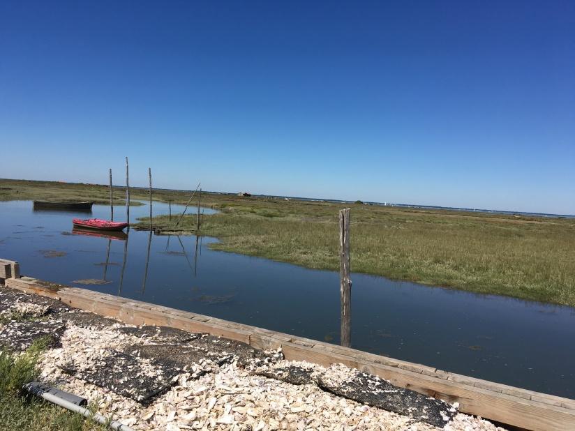 village-pecheur-arcachon-bassin-cap-ferret-gironde-maison-cabane-tchanquée-patrimoine-marée-bateau-nature-aquitaine-banc-arguin (9)