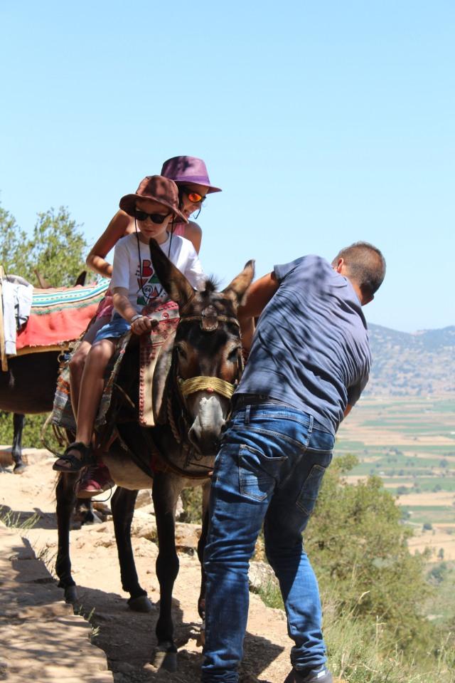 crete-voyage-pteapotes-knossos-krissi-ile-grece-trip-decoverte-santorin-santorini-vacances