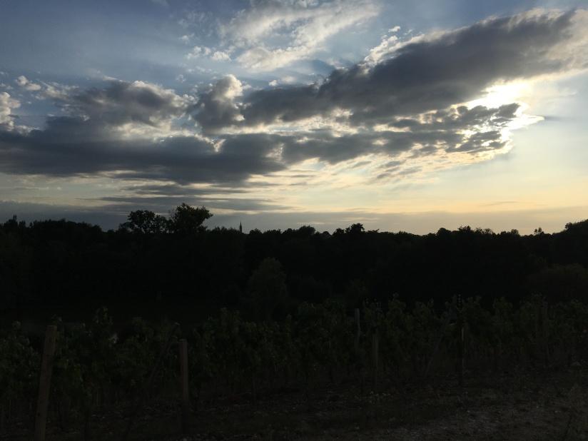 chateau-tournefeuille-neac-lalande-pomerol-saint-emilion-vigne-vignoble-chambre-hote-vins-oenotourisme-famille-gironde-aquitaine-9
