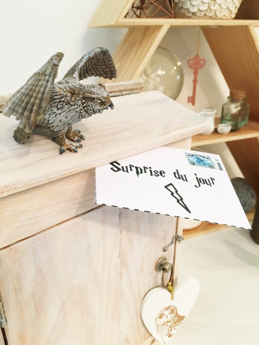 calendrier-avent-noel-decembre-enveloppe-lettre-boite-box-harry-potter-theme-hibou-chouette-magie-pteapotes-17