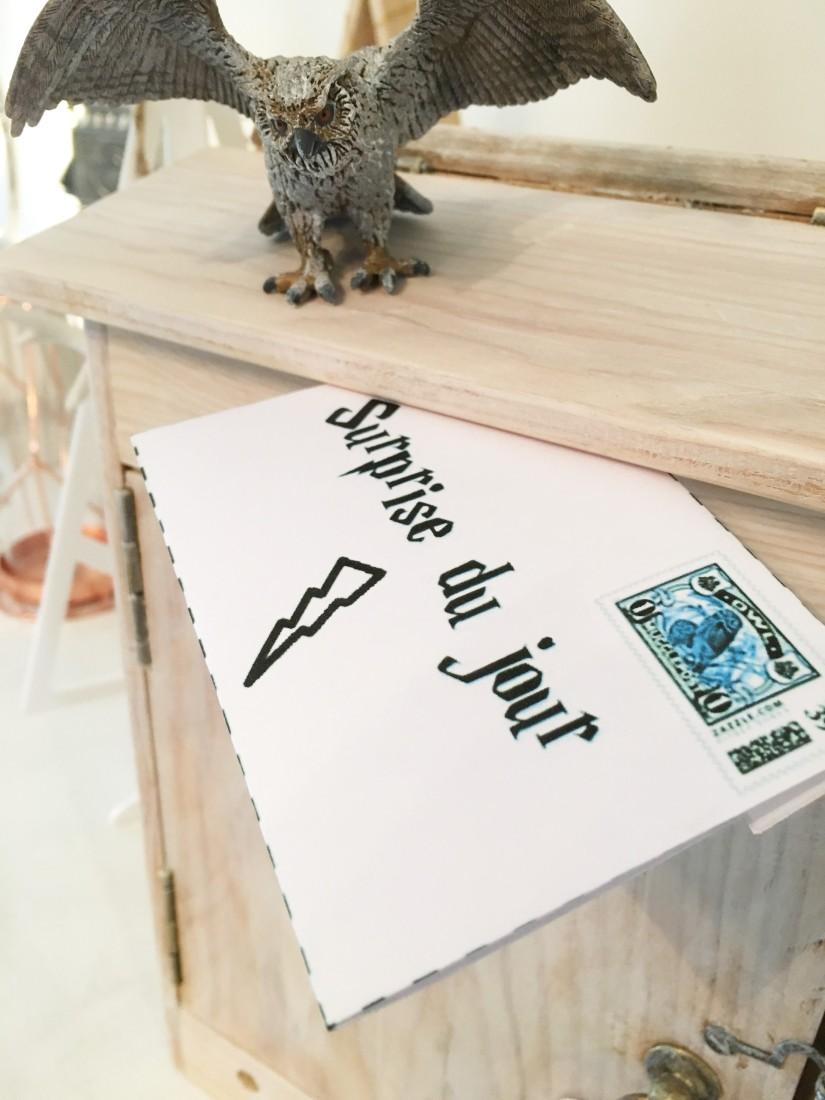 calendrier-avent-noel-decembre-enveloppe-lettre-boite-box-harry-potter-theme-hibou-chouette-magie-pteapotes-19