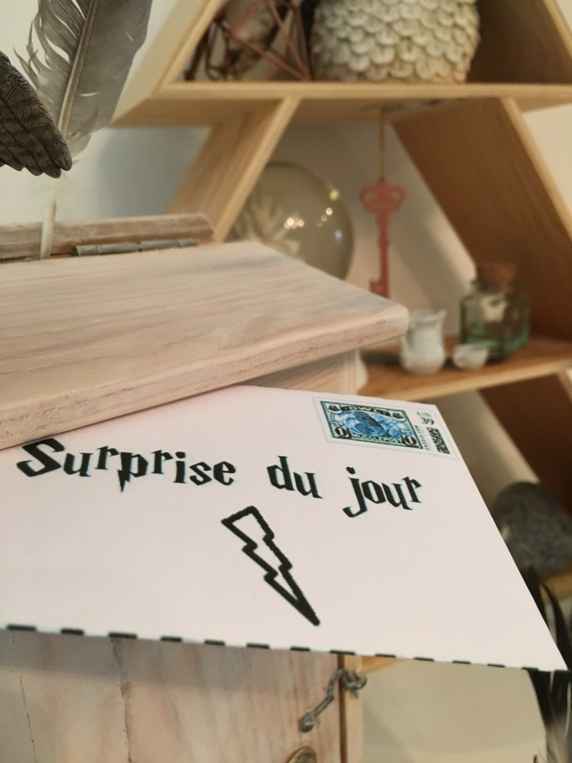 calendrier-avent-noel-decembre-enveloppe-lettre-boite-box-harry-potter-theme-hibou-chouette-magie-pteapotes-30