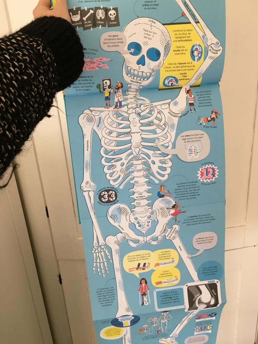 livre-jeunesse-anatomie-seuil-delamartiniere-editions-corps-humain-usborne-lecture-enfant-jeune-public-decouverte-7