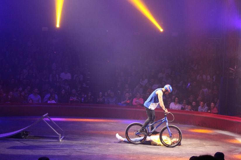 cirque-arlette-gruss-show-spectacle-bordeaux-chapiteau-quinconces-pteapotes-58